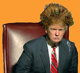 trump-hair-sized